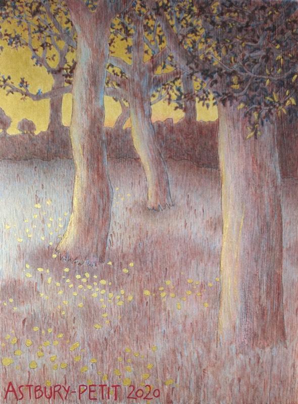 Look Again – Trees